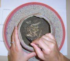 Fouille manuelle d'une urne funéraire