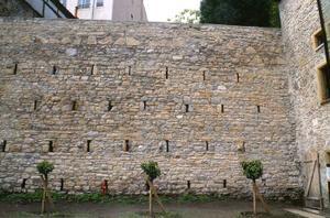 Mur de terrasse et jardin du 10-12 rue Gadagne © SA Ville de Lyon
