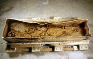 Sarcophage en plomb © AFAN